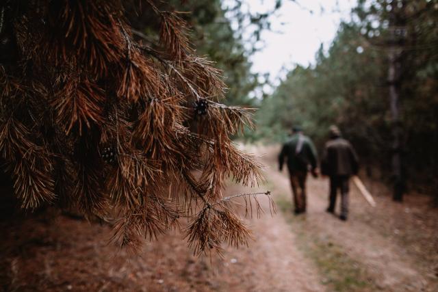 saison-de-chasse